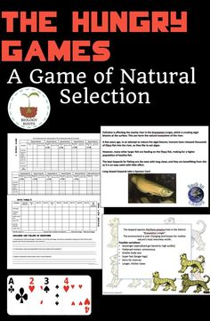 The Hungry Games: A Game of Natural Selection - ecological Biology Classroom, Biology Teacher, Teaching Biology, Teaching Tips, Ap Biology, Study Biology, Classroom Board, Classroom Ideas, Biology Lessons