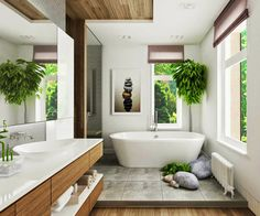 「bathroom plants」の画像検索結果