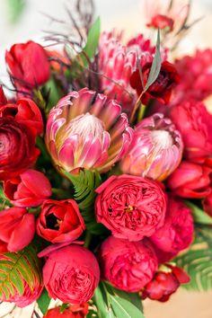 Rose + Giant Protea