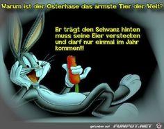 39 Schone Bilder Zu Spruche Ostern Happy Easter Easter Funny
