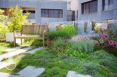 Střešní zahrada | Atelier Flera