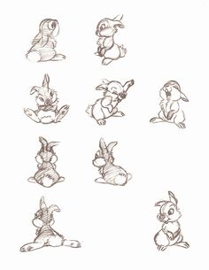 "A Few More Thumper Concept Sketches From ""Walt Disney's Bambi: The Sketchbooks Series"" panpan <3"