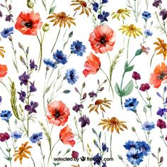 Free vector Variety of watercolor flowers #9490