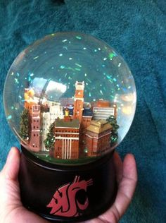 WSU Snowglobe Plays the fight song!- sitting in our dining room Washington State University, Fight Song, Dream School, Music Boxes, Alma Mater, Hacks Diy, Seahawks, College Life, Cool Diy