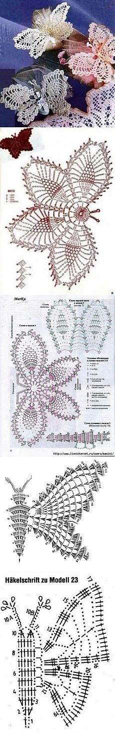 This Pin was discovered by อรพ Crochet Cross, Crochet Chart, Thread Crochet, Crochet Doilies, Crochet Flowers, Crochet Lace, Crochet Butterfly Pattern, Crochet Motif Patterns, Crochet Designs