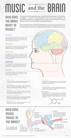 Infographic created for class. I researched the effects that music has on the brain. I wanted to highlight that every lobe is active when listening to music.I wanted to establish a style that is both elegant and structured in order to mesh the topics of… Anxiety Remedies, Natural Remedies For Anxiety, Sleep Remedies, Piano Lessons, Music Lessons, Art Lessons, Music And The Brain, The Human Brain, Brain Facts