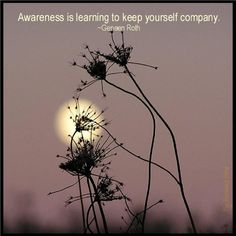 """Awareness is learning to keep yourself company."" Geneen Roth"