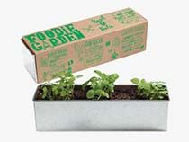 Buy window box liners-plastic that's lightweight and very durable. Window Box Liners in different sizes and colors. Window box liners use indoors or outside. Cilantro Plant, Chives Plant, Wrought Iron Window Boxes, Balsamic Vinegar Dressing, Seed Planter, Herb Garden Kit, Vegetable Garden, Growing Raspberries, Mint Plants