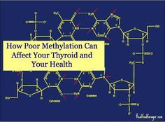 How Poor Methylation Can Affect Your Thyroid and Your Health - Very interesting, my doctor put me on a methylation supplement and now I know why!!!!