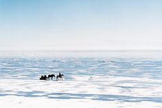 In winter, horse-drawn sleighs turn Russia's icy Lake Baikal, the deepest and oldest lake in the world, into a vast open highway. (Photograph by  Stefan Volk/laif/Redux)