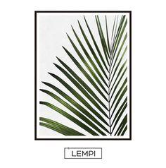 568f2496258b 46 Best Tropical leaf artwork images