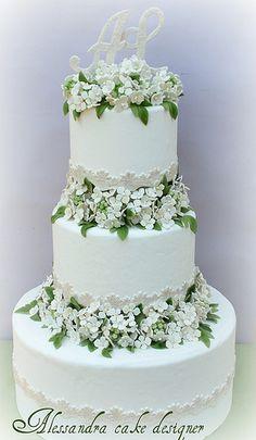 Wedding Cake hydrangea