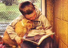 A different kind of hero, but heroes none the less ! Kids reading to shelter cats at a program that is operated by the Animal Rescue League of Berks County, Penn. Huge thank you to the kids and the Animal Rescue League ♥♥ Crazy Cat Lady, Crazy Cats, I Love Cats, Cute Cats, Funny Cats, Pretty Cats, Animal Rescue League, Photo Chat, Faith In Humanity Restored
