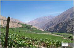 Cile - Valle del Elqui