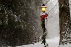 Really want one of these at the end of my driveway. Something about a lamp~post makes me all warm & fuzzy inside