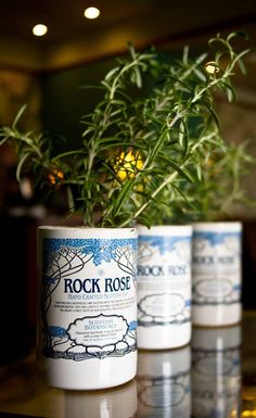 Cut down pretty gin bottles and use for herb planting.