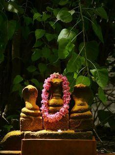 Srpakavu, Kerala www. Kerala Travel, Kerala Tourism, Perspective Photography, Dream Photography, Kerala India, South India, Indian Temple Architecture, Mother India, Lord Shiva Family