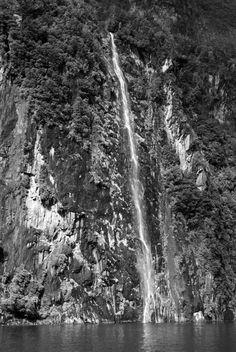 Milford Sound Waterfall #travel #nz