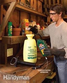 Buy concentrated herbicide. Getting rid of weeds in your weed-infested yard.