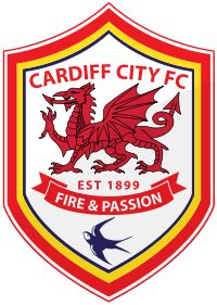Cardiff City - another Welsh club that competes in English football