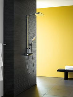 Hansgrohe Raindance Select Ecostat exposed Thermostat with Raindance Select Handshower, our shower :)