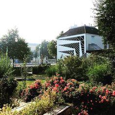 Coehoornpark Arnhem