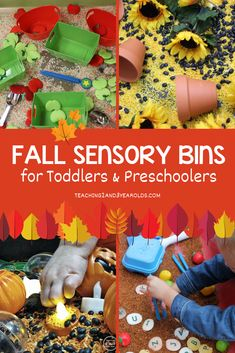 Here are our top 7 fall sensory bins for toddlers and preschoolers! They are loved because of all the scooping and pouring that happens, not to mention apples, pumpkins, spiders, sunflowers... pure fine motor fun! #fall #apples #sensorybins #sensorytables #finemotor #autumn #apples #farm Sensory Activities Toddlers, Preschool Learning Activities, Toddler Learning, Infant Activities, Toddler Preschool, Art Activities, Toddler Play, Early Learning, Farm Sensory Bin