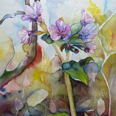 Erstes Bunt (c) Frühlingsbild in Aquarell von FRank Koebsch -  ist auch als Kunstkarte erhältlich ;-)