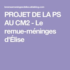 PROJET DE LA PS AU CM2 - Le remue-méninges d'Élise