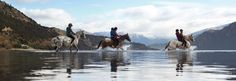 caballo en el horizonte - Buscar con Google