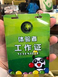 ChengDu WestChinaGo Travel Service www.WestChinaGo.com Tel:+86-135-4089-3980 info@WestChinaGo.com Chengdu, Volunteer Programs, Day Tours, Flask, Panda, China, Travel, Viajes, Destinations