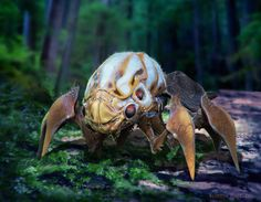 insect design 2 by randyb
