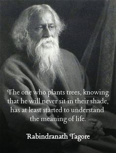 The one who plants trees, knowing that he will never sit in their shade, has at least started to understand the meaning of life. - Rabindranath Tagore, who in 1913 he became the first non-European to win the Nobel Prize in Literature. Wise Quotes, Quotable Quotes, Great Quotes, Quotes To Live By, Inspirational Quotes, Fart Quotes, Wisdom Sayings, Strong Quotes, Change Quotes