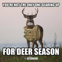 18 Funny Hunting Memes That Are Insanely Accurate - Jagd Deer Hunting Memes, Deer Meme, Funny Hunting Pics, Hunting Stuff, Archery Hunting, Hunting Camo, Hunting Season Quotes, Women Hunting, Hunting Pictures