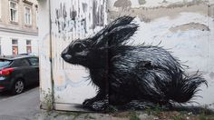 Vienna – Rabbit - Roa is a Belgian street-artist who creates black and white animal portraits on walls in cities all over the world, in varying degrees of decay.
