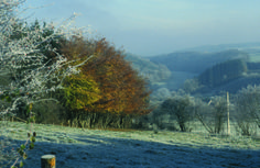 Anthisnes - une prairie en hiver.© FTPL
