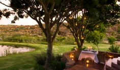 View the picture gallery of Bushmans Kloof luxury retreat showcasing photographs of the African landscape and wild life of this wilderness reserve. Wilderness, South Africa, Travel Photography, Wildlife, Landscape, Luxury, Gallery, Plants, Pictures