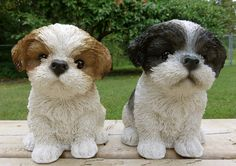 2 Shih Tzu Dog Puppies Figurines 7 in. Black and Brown/White