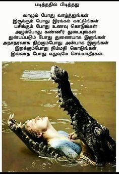 Apj Quotes, Tamil Motivational Quotes, Tamil Love Quotes, Self Quotes, Inspirational Quotes, Life Coach Quotes, Good Life Quotes, Unique Quotes, Meaningful Quotes