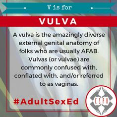 """""""If you really want to impress a sex geek, knowing the difference between the vagina and the vulva is a great place to start."""" – Allison Moon, Girl Sex 101 A vulva is the amazingly diverse external genital anatomy of folks who are usually AFAB (Assigned Female At Birth). Vulvas (or vulvae) are commonly confused …"""
