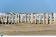Paalhoofden 4  | Rob Donders Grafisch ontwerp + Fotografie