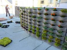 What a fun way to grow vertically!! Against a hill!!   Easy-to-install living wall system uses felt pockets for plants : TreeHugger