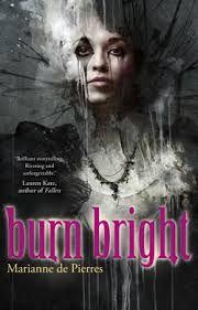 #mariannedepierres #burnbright #novel #book #coverart