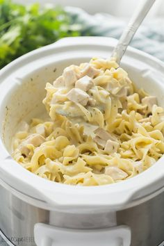 This Crockpot Chicken and Noodles is an easy crockpot chicken recipe that will please the whole family! So easy and so creamy (NO cream of chicken soup) Fusilli, Strip Steak, Edamame, Tempeh, Tilapia, Healthy Crockpot Recipes, Beef Recipes, Crockpot Meals, Hamburger Recipes