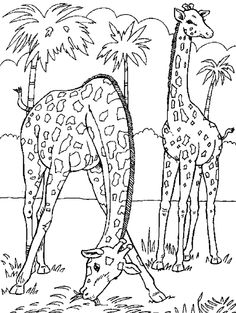 Big Coloring Pages Of Animals | coloring machine tips wallpapers school projects online coloring ...