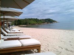 Photos of SALA Samui Resort And Spa, Koh Samui - Resort Images - TripAdvisor