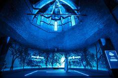 Bombay Sapphire - The Art Room - maumorgo