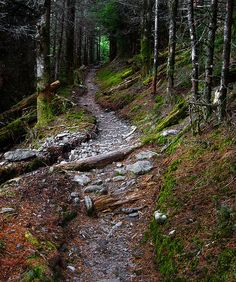 Appalachian Trail - Tricorner Knob by pvarney3, via Flickr