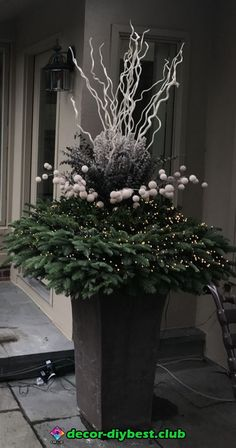 garten dekoration weihnachten Better than twenty years ago, before a cell phone had been invented or a world wide web established, I would drive Rob to the airport for a buying trip to Europe. In those days we could have a cock Christmas Urns, Christmas Planters, Christmas Flowers, Outdoor Christmas Decorations, Christmas Centerpieces, All Things Christmas, Christmas Home, Tree Decorations, Christmas Wreaths