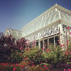 volunteer park conservatory by LethaColleen, via Flickr